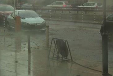 В София е страшно! Пороен дъжд и буря, дърво падна върху две коли