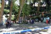 Десетки убити и ранени при падане на дърво