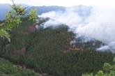 1000 лв. за палене на огън в гората