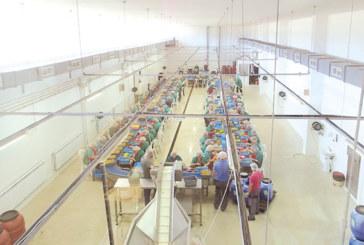 """Собствениците на благоевградската фирма """"Олимпос 99"""": Шансът, който даваме на работниците си, е целогодишна работа, гарантирани доходи и предимството да планираш отпуската и почивните дни с приятели и семейство"""