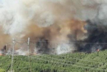 Ден четвърти! Актуална информация за пожара в Кресненското дефиле