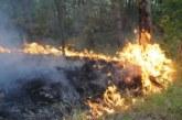 70 служители на ЮЗДП гасят пожара край селата Плоски и Илинденци