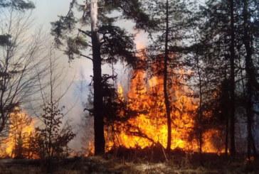 Македония в паника! Бушуващият пожар се разраства