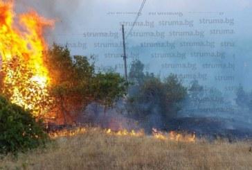 ОГНЕНИЯТ УЖАС ПРОДЪЛЖАВА! Нов пожар лумна в Кресненското дефиле