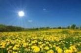 Слънчева неделя