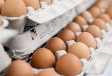 Внимание! Стотици хиляди отровни яйца плъзнаха в магазини у нас!