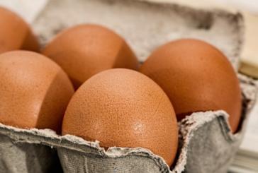 Кошмарът започва! Първи натровени със заразените яйца у нас