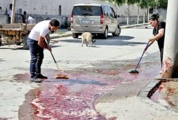 КЪРВАВА КАСАПНИЦА! Колят и кормят животни пред очите на малки деца
