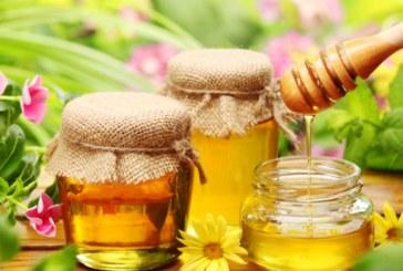 Кой мед какво лекува