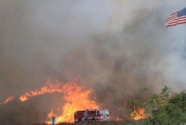 Нов пожар вдигна на крак 5 противопожарни екипи