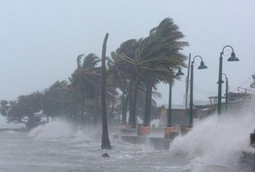"""""""Ирма"""" вилнее с бясна сила! Сее разруха и смърт във Флорида"""