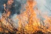 Пожар лумна край границата ни с Гърция