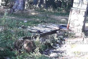 Безотговорни туристи са превърнали поляните в м. Предел в боклукчарник, мирише на мърша от изхвърлените остатъци от храна