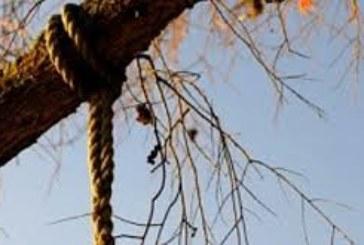 ТРАГЕДИЯ! Безработен младеж увисна на дърво, преди да се самоубие си купил кафе