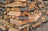 Закъснелите ще плащат по-скъпо! Цената на дървата и въглищата скочи
