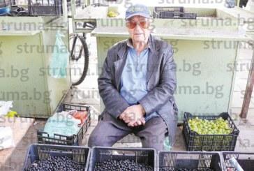 Клиенти няма! Трудна година за зеленчукопроизводителите в Гоцеделчевско