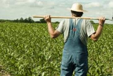 Фермери пребиха дядо, оплакал се от…