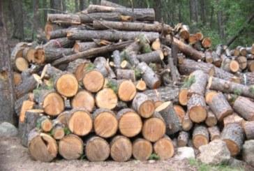 Домакинствата в Югозапад изкупиха 1/3 от планираните количества дърва