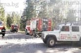 Огнеборци, медици, планински спаситеи, доброволци… правиха диги и просеки, спасяваха хора при пожар в гората край Разлог