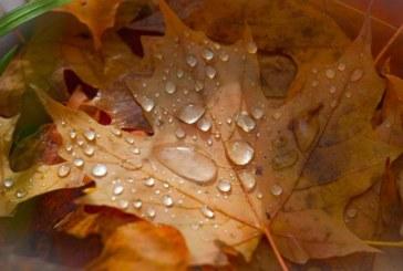 Ето какво време ни очаква през ноември, живакът удря…