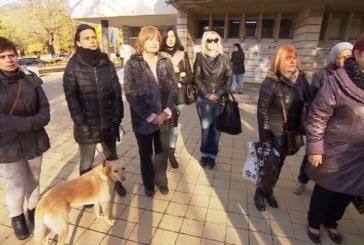 Протест в Перник! Граждани оставиха мъртви кучета пред общината