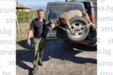 Вълк единак с тегло, равно на неговото – 81 кг, повали синдикалният лидер Д. Марчев