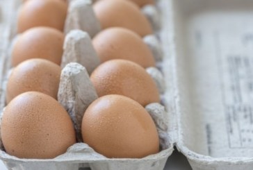 10 ползи от яйцата, за които не знаете