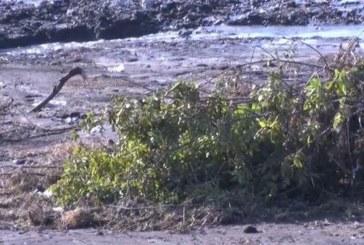 Търсят в Мандренското езеро изчезналата в пороя жена
