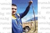 Крупие излезе за гъби, направи си селфи със 70-см змия