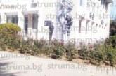 Тийнейджъри прескачаха с велосипеди розите около Съдебната палата в Благоевград