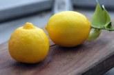 Тя взе 6 лимона, вари ги 3 минути и изпи водата, за да постигне нещо великолепно