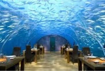 Туристи посетиха луксозен ресторант, но ги сполетя нещо ужасно