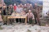 Пожарът в дефилето активизира хищниците! Хаджидимовско под вълча обсада
