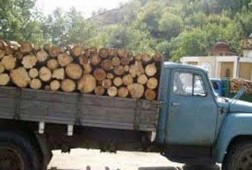 Спипаха контрабандна дървесина в Елешница и Сандански
