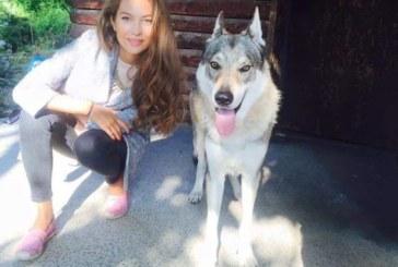 Никол Станкулова с нов домашен любимец – вълк