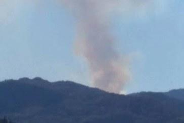 Опасно! Пожар от Гърция настъпва към Родопите