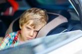 Вижте как да избегнете прилошаване в колата