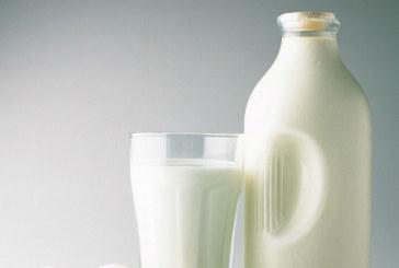 Изследване сочи! Млякото в търговските мрежи е опасно