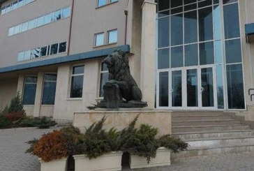 Монтираха реставрирания лъв пред НДК