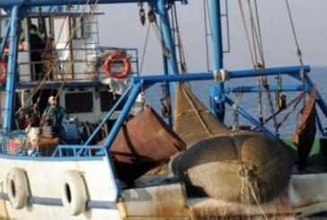 Бургаските рибари ще се къпят в пари, получават златен шанс