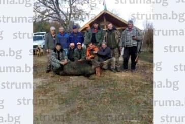 ТИТАНИЧНА БИТКА! Убиха страшилището на Малешевска планина, 260-кг нерез не се дал без бой, умъртвил две кучета