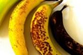 Кои от тези банани ядете? Вашето здраве зависи от отговора
