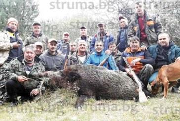 220-кг горски звяр прибави към ловните си трофеи струмянският предприемач Б. Христов, преследват го с трикрако гонче