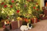 Ще почиваме един ден повече по Коледа