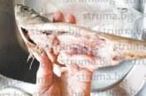 Благоевградчанка купи риба от магазина, прибра се у дома и остана шокирана