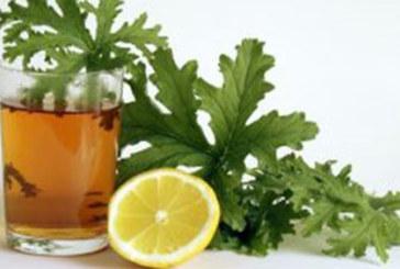 Мощен лек за упоритата кашлица