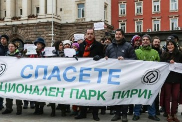 """Природозащитници излязоха пред Министерски съвет срещу разширяването на ски зона """"Пирин"""""""