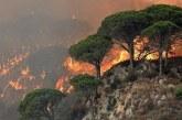 ОГНЕН АД! Пожарите в Калифорния взеха жертва