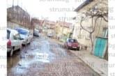 Жители на Перник газят 2 г. в локви заради избили подпочвени води на улицата им, екипът на кмета В. Церовска отказва да помогне