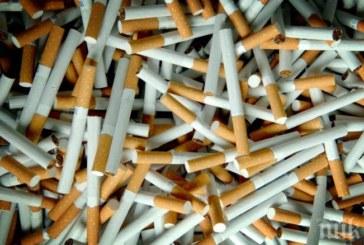 РЕКОРД! 10 млн. контрабандни пакета цигари конфискуваха на Солунската митница